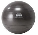 SPRI Professional Plus Xercise Core Workout Swiss Ball  (55cm, Slate)