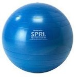 SPRI Professional Plus Xercise Core Workout Swiss Ball (75cm, Silver)