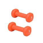 5 lb. Dumbbell Neoprene Hand Weight (Pair) by Gaiam