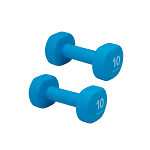10 lb. Dumbbell Neoprene Hand Weight (Pair) by Gaiam