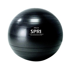 55cm. Elite Stability Exercise Ball for Balance, Yoga, or Ab Workouts (Professional Gym Quality) by SPRI