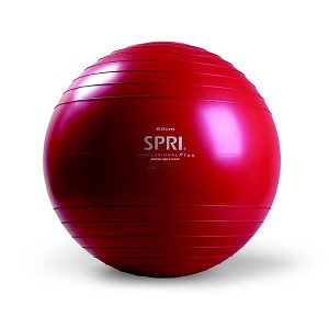 65cm. Elite Stability Exercise Ball for Balance, Yoga, or Ab Workouts (Professional Gym Quality) by SPRI
